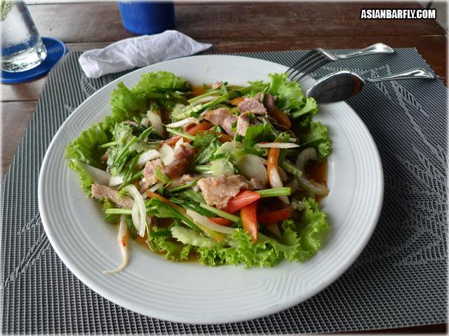 Thai Food Spicy Beef Salad